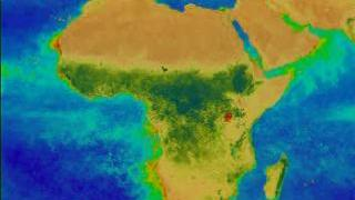 Link to Recent Story entitled: Africa: Showing the Changing Seasons