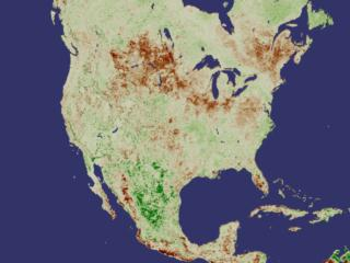 NDVI Anomaly North America July 2000