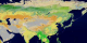 This animation of Asia shows each of the 17 MODIS landcover classifications individually and then the series repeats with each of the classes being shown additively.