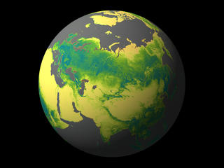 Carbon has been stored in forests throughout North America, Europe, and Asia