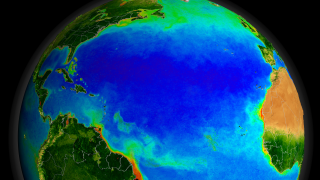 Link to Recent Story entitled: SeaWiFS Biosphere Data over the North Atlantic