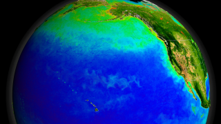 Link to Recent Story entitled: SeaWiFS Biosphere Data over the North Pacific