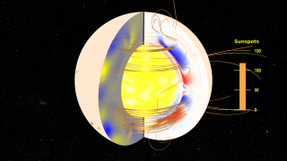 Link to Related Story entitled: The Solar Dynamo: Toroidal and Radial Magnetic Fields
