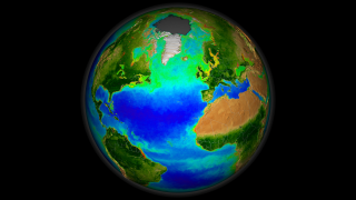Animation depicting nearly a decades worth of SeaWiFS ocean chlorophyll concentration and land Normalized Difference Vegetation Index (NDVI) data.