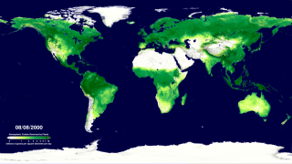 The gross primary productivity of the world's land areas for the period 2000-2009 as calculated from Terra's MODIS instrument.  The original 8-day average GPP data has been smoothed to a 24-day average to make the animation less noisy. This version adds a date and colorbar to the animation.