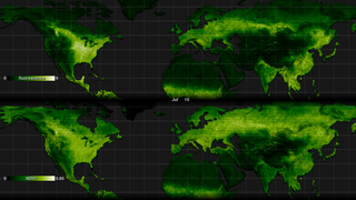 Link to Recent Story entitled: Fluorescence Visualizations in High-Resolution (Comparison to NDVI)