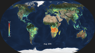 Link to Recent Story entitled: Monthly burned area from the Global Fire Emissions Database (GFED)