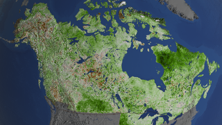 Link to Recent Story entitled: Vegetation Greening Trend in Canada and Alaska: 1984-2012