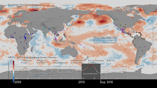 Link to Recent Story entitled: Sea Surface Temperature Anomalies and Patterns of Global Disease Outbreaks: 2009-2018 (4K version)