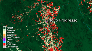 Link to Recent Story entitled: Brazil and Novo Progresso Land Use Data Over Time