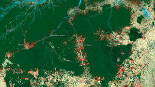 Link to Recent Story entitled: Novo Progresso Surrounding Region Land Use Data Over Time