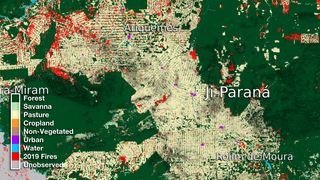 Link to Recent Story entitled: Ji-Paraná Land Use Data Over Time