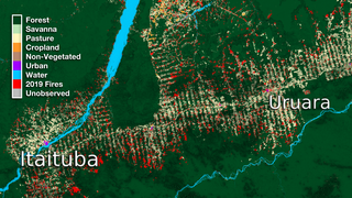 Link to Recent Story entitled: Itaituba and Uruara Land Use Data Over Time
