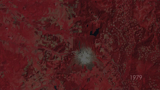 Timelapse of Mt. St. Helens and surrounding area from 1979 to 2010, as imaged by Landsat satellites. From 1979-1983 the images are shown in false-color, where red indicates healthy vegetation.  From 1984-2010, the images are shown in natural-color.