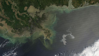 Video File :  including video of the spill location ( updated through April 2011 ) and a collection of images from NASA satellites.