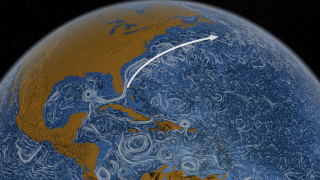 The Gulf Stream carries warm water from the eastern coastline of the United States to regions of the North Atlantic Ocean.