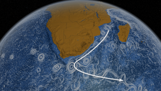 The Agulhas Current travels along the coastline of Mozambique and South Africa and then loops eastward.