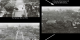 Graphic comparing three images of the U.S. National Mall:   First, as it looked in 1936.   Second, the Mall if it had been reforested at the same rate as the Eastern U.S. during the 2oth century.  Third, the amount of trees lost globally around the world every 15 minutes.