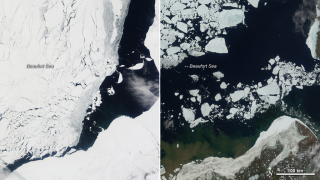 The rapid seasonal retreat of ice in the Beaufort Sea was seen along the Alaskan coast from May 13 (left) to June 16 (right).