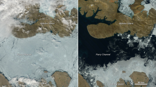 Parry Channel and much of the famous Northwest Passage went from ice-choked on July 17 (left) to open water on Aug. 3 (right).