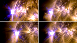 These images from NASA's Solar Dynamics Observatory show four X-class flares emitted on May 12-14, 2013 – the first four X-class flares of 2013. Each panel is a blend of two images one showing light in the 171 Ångström wavelength and the other in 131 Ångströms. Unlabeled. Credit: NASA/SDO/GSFC