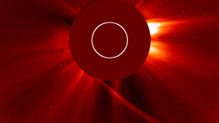 These images from NASA's Solar Terrestrial Relations Observatory and the ESA/NASA Solar and Heliospheric Observatory show Comet ISON growing dim as it made the journey around the sun. The comet is believed to have broken up and evaporated. Watch this video on the NASA Goddard YouTube channel . Credit: NASA/STEREO/ESA/SOHO/GSFC