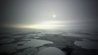 Link to Recent Story entitled: Sea Ice: Past, Present and Future
