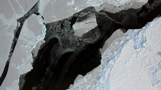 Link to Related Story entitled: Sea Ice Maximum/Operation IceBridge Live Shots