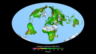 Link to Recent Story entitled: Rising CO2 Levels Greening Earth
