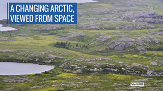 Link to Recent Story entitled: Details of Arctic Greening in North America