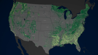 Link to Related Story entitled: Mapping Forests Through Time