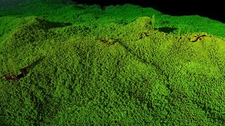 Link to Related Story entitled: 3-D Views of Puerto Rico's Forests After Hurricane Maria