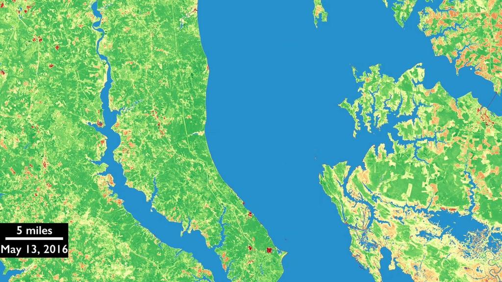GMS: Harmonized Landsat 8 and Sentinel-2 Data