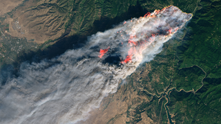 Link to Recent Story entitled: A Drier Future Sets the Stage for More Wildfires