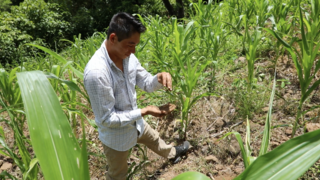 Link to Recent Story entitled: NASA Satellites Help Farmers in Central America's Dry Corridor