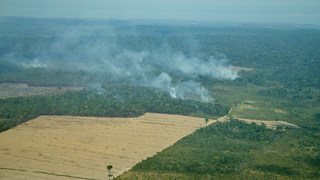 Link to Recent Story entitled: Tracking Amazon Deforestation