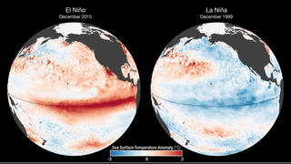 Link to Recent Story entitled: 2015 El Niño Disrupts Ocean Chlorophyll