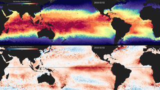 Link to Recent Story entitled: Sea Surface Temperature and Temperature Anomaly 2015-2016